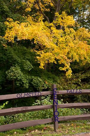 Olmsted Falls Senior