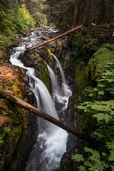 Tuesday 0814 -  Sol Duc Falls