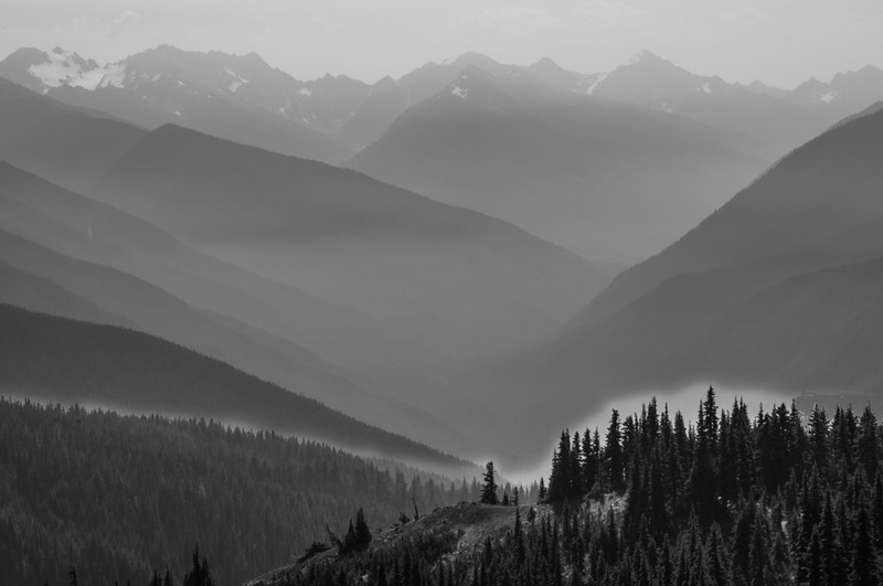 Elwha Valley Smokey