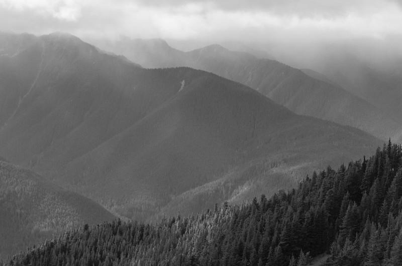At the Cloud Level Hurricane Ridge