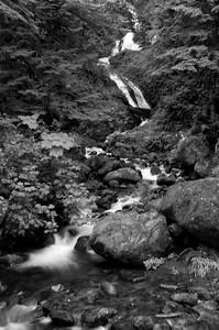 Park Boundary Falls Quinault