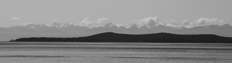 Olympic Mountains From San Juan Island