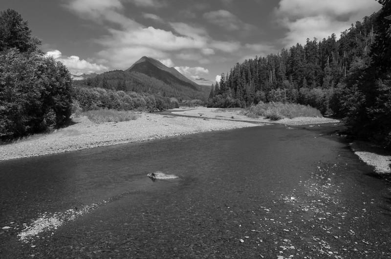 Gravel, Quinault River