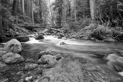 Footbridge Little Big Quilcene River