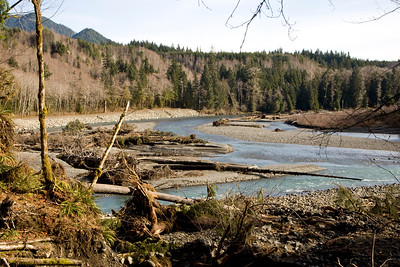Hoh River, strewn with logs and other debris following heavy winter rains