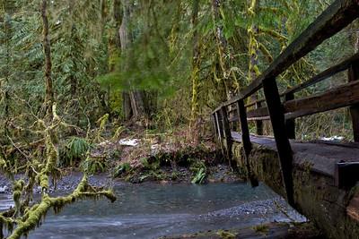Log bridge over Barnes Creek on trail leading to Marymere Falls