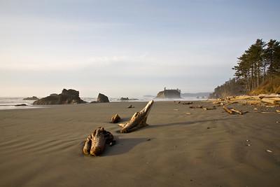 Driftwood on Ruby Beach