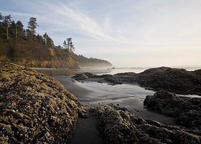 Shoreline of Ruby Beach