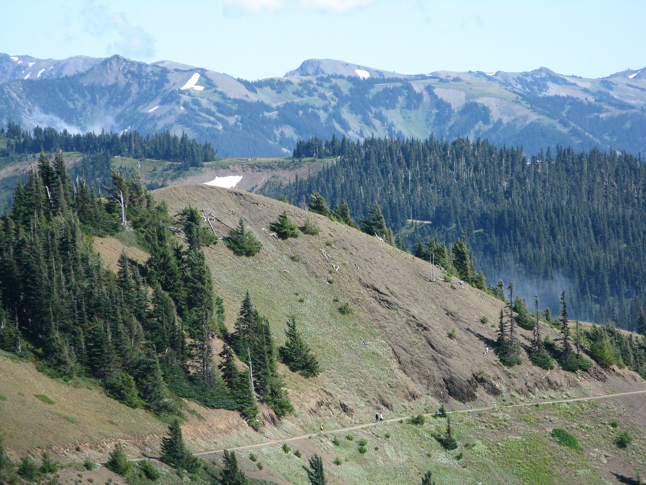 Another view of the trail on the way back.