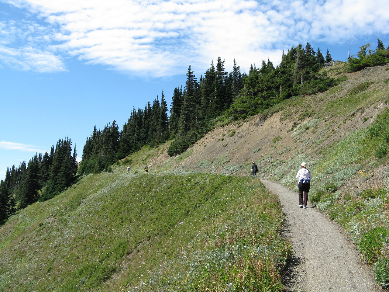 Mary traversing the mildly inclined trail across the hillside.