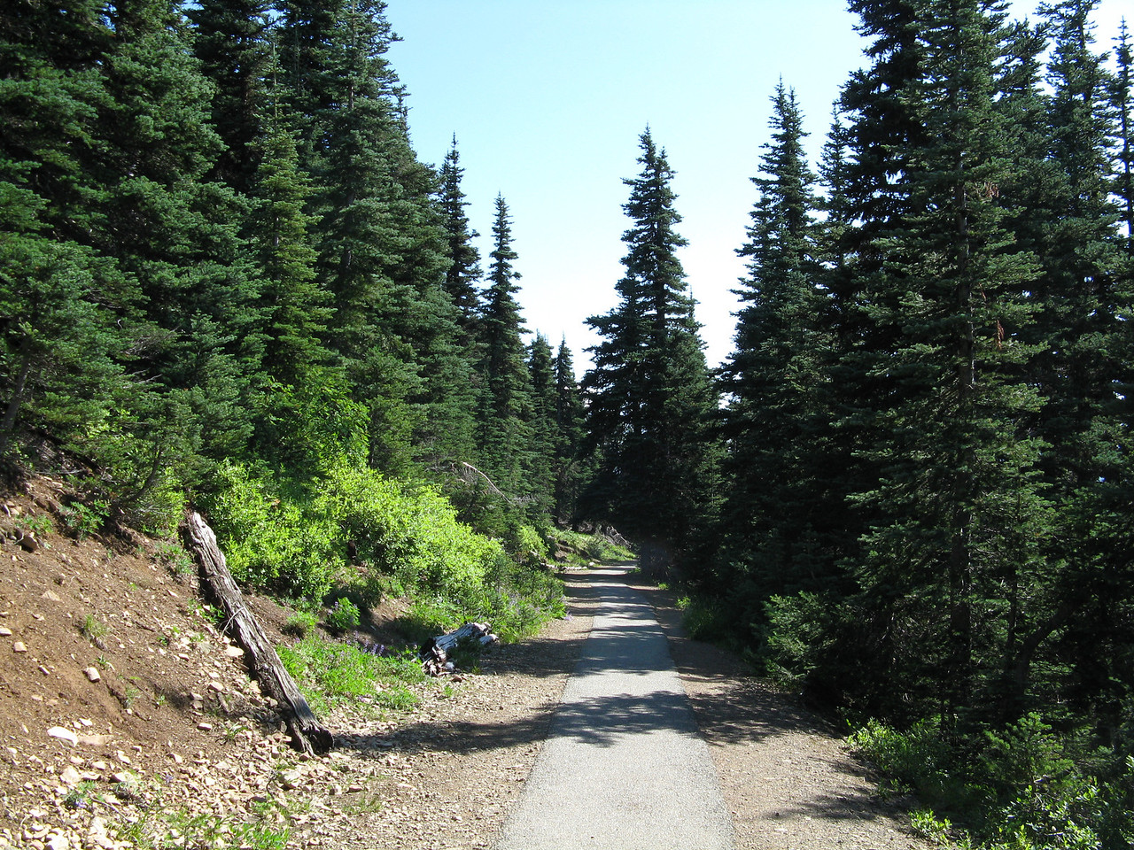 The paved trail back.