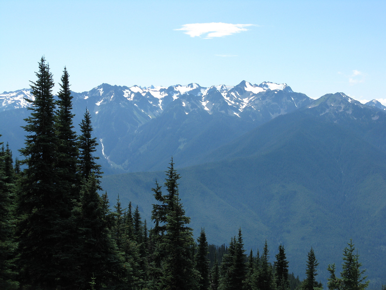 Looking south to the glaciers on the Olympic Mountains.