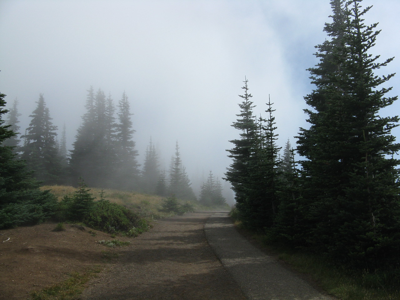 The clouds were moving in from the north, and the trail disappeared into the mist was we neared the trailhead.