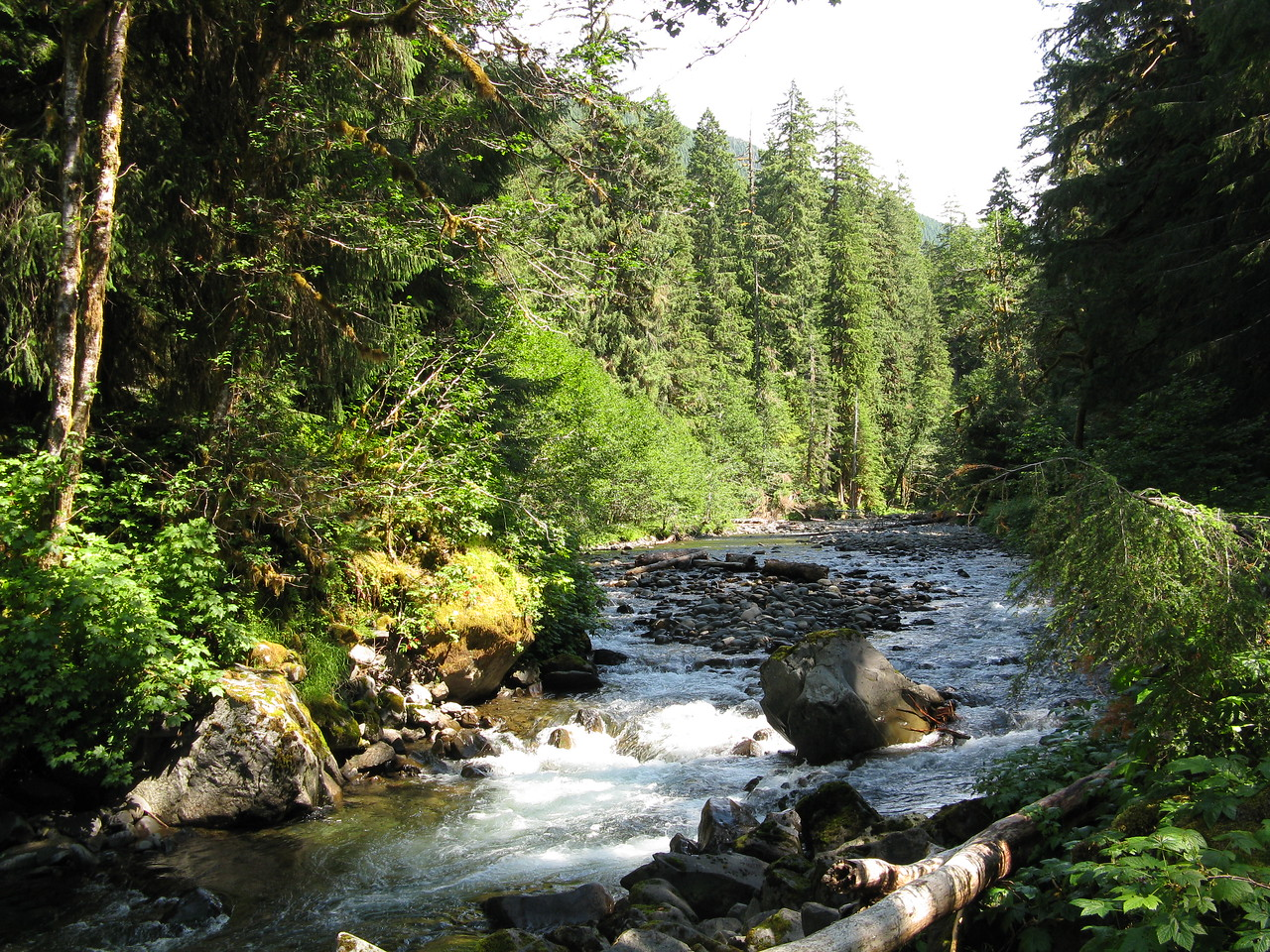 Sol Duc River from Lovers Lane Trail.