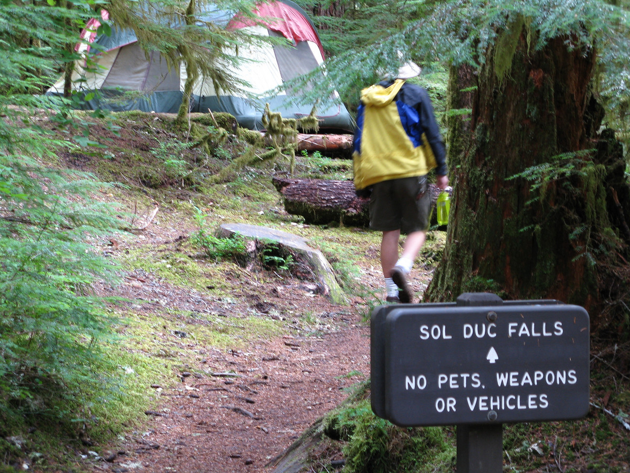 The trail took us through the Sol Duc Campground in Olympic National Park.
