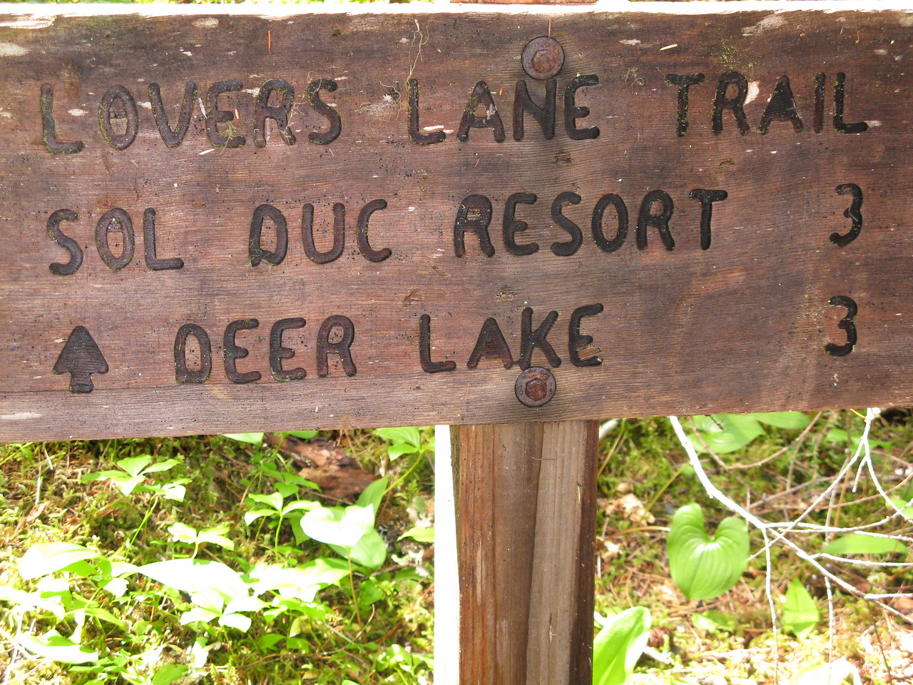 We took the trail on the west side of the river, named the Lovers Lane Trail, back to Sol Duc Hot Springs Resort.