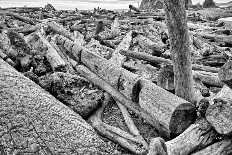 Washed ashore 2.
