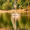 Sailboat, Port Ludlow.