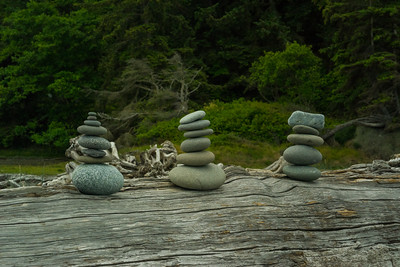 Stacks at Dungeness Spit