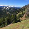Switchback Trail with Mountain Goats