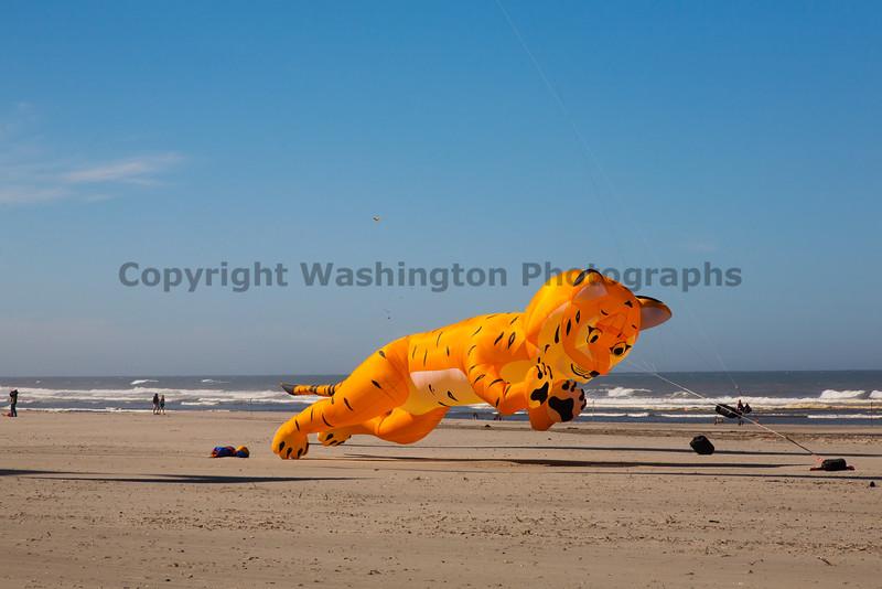 Long Beach Kite Festival 38