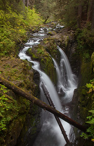 Sol Duc Falls, Olympic National Park, WA