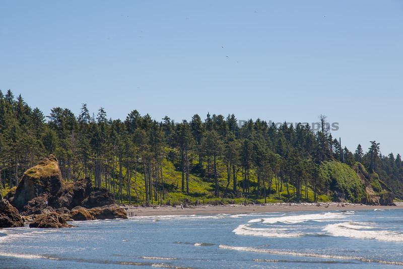 Ruby Beach 118