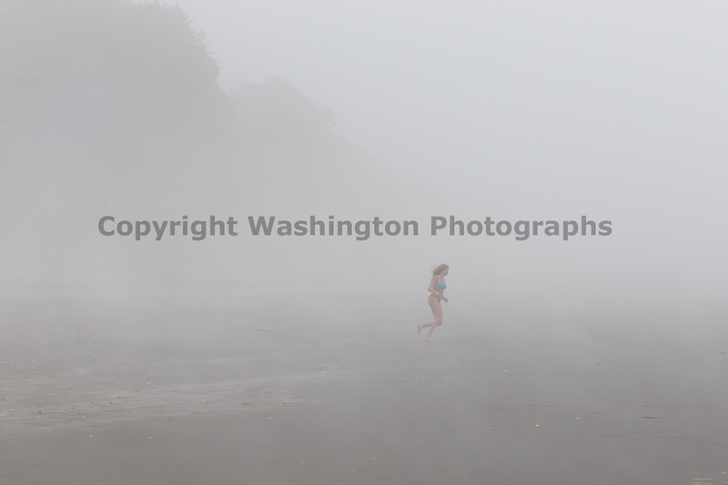 Kalaloch Fog 17