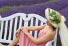 Lavender Farm 157
