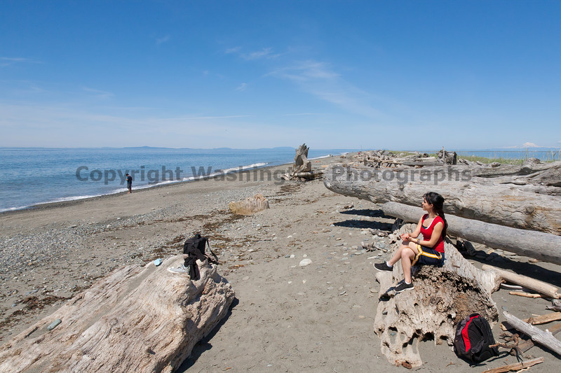 Dungeness Spit 60