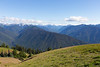 Hurricane Ridge 11