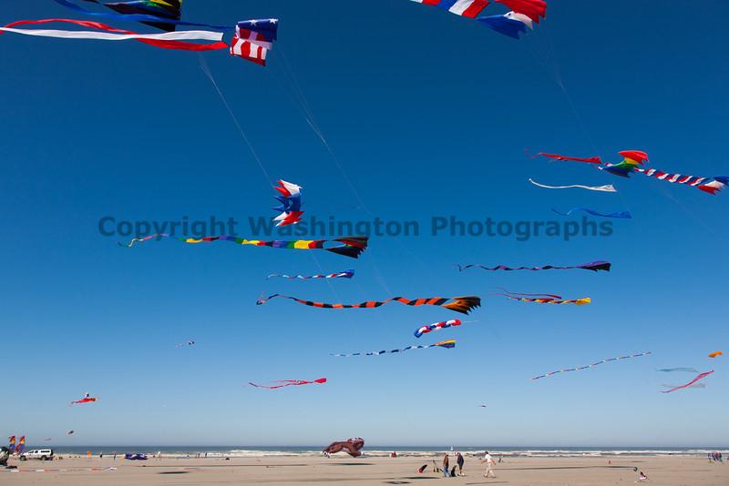 Long Beach Kite Festival 29