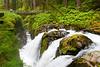 Sol Duc Falls 17