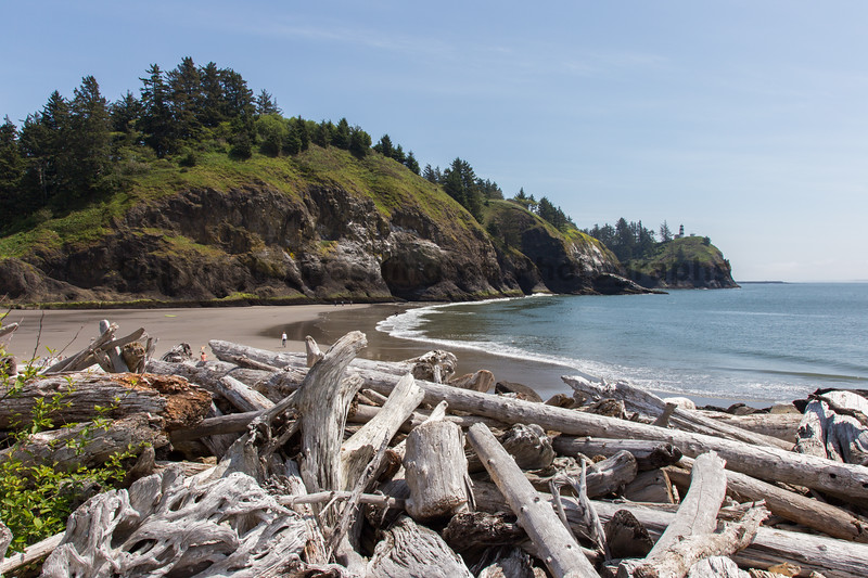Cape Disappointment 52