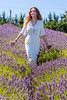 Lavender Farm 276