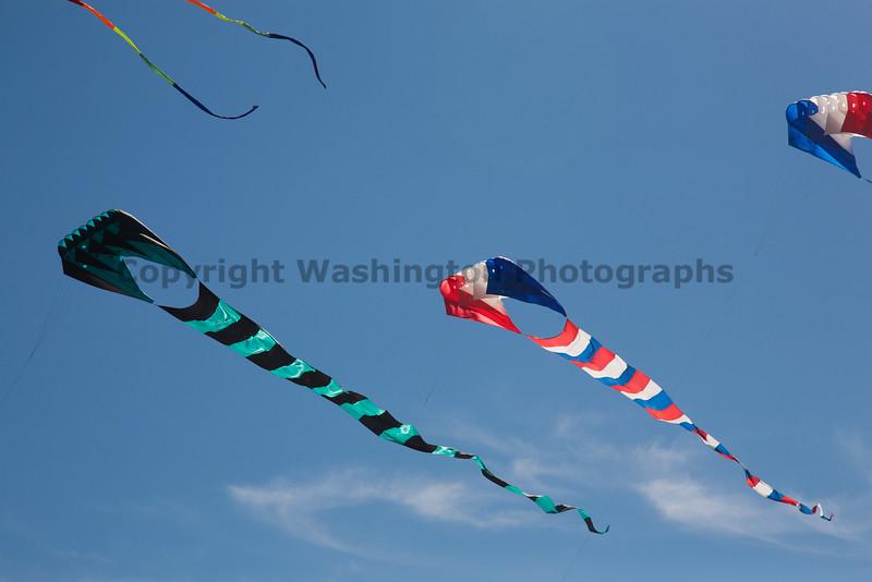 Long Beach Kite Festival 58