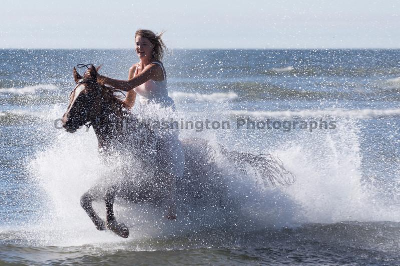 Long Beach Horseback Riding 28