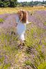 Lavender Farm 332