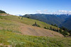 Hurricane Ridge 10