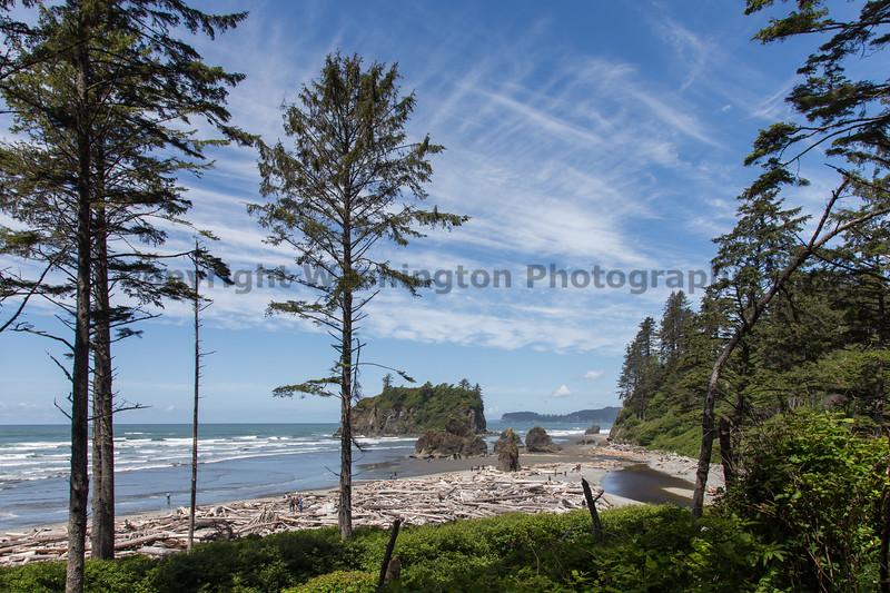 Ruby Beach 173