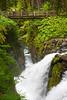 Sol Duc Falls 19