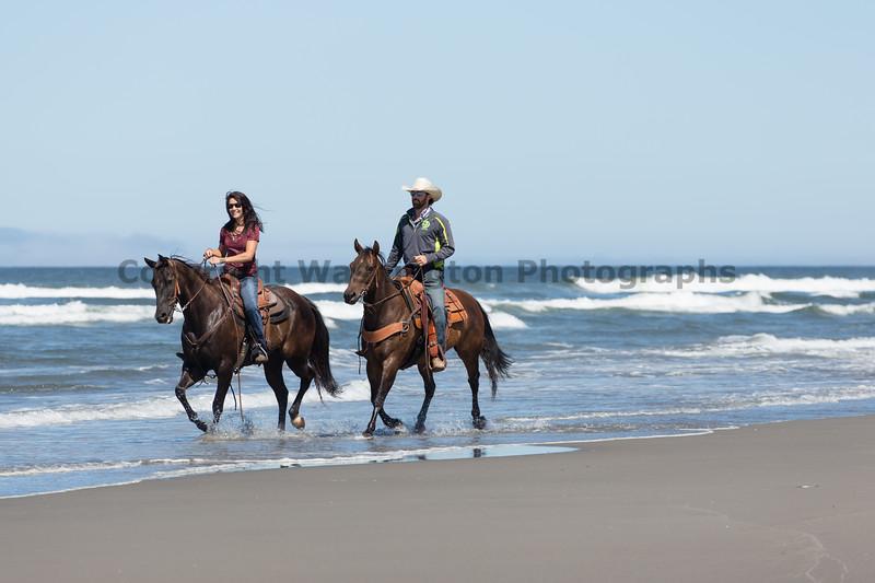 Long Beach Horseback Riding 29
