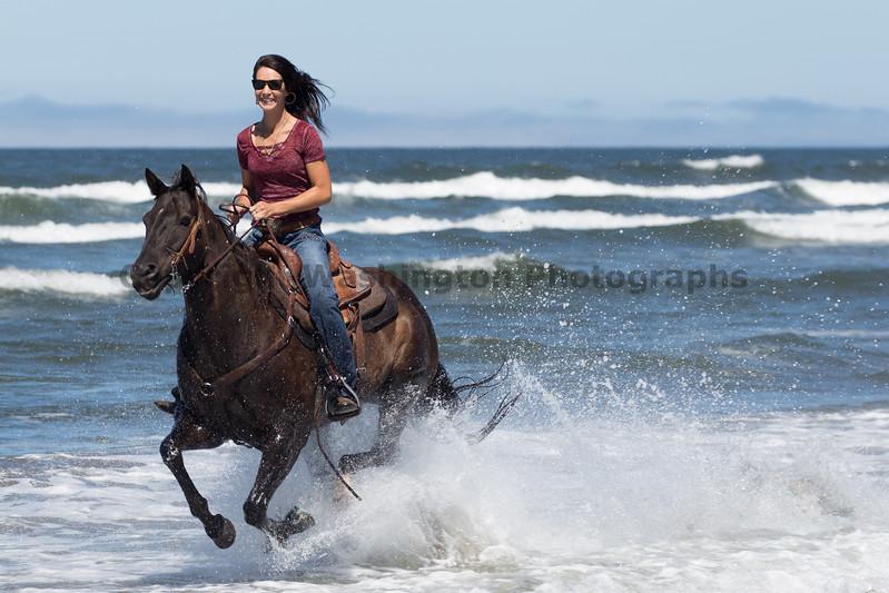 Long Beach Horseback Riding 32