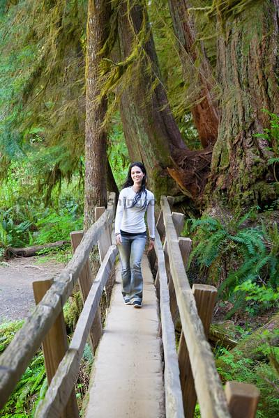 Marymere Falls Trail 19
