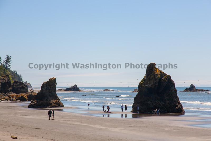Ruby Beach 126