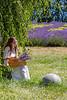 Lavender Farm 307