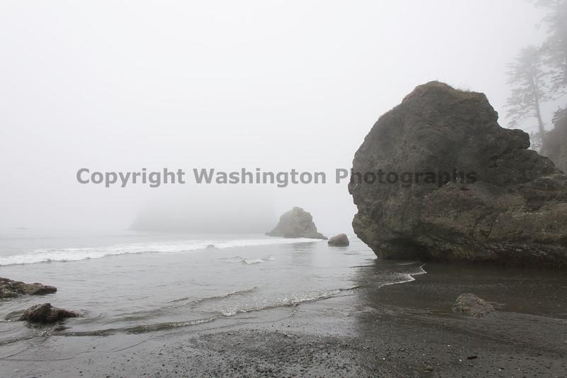 Ruby Beach 49
