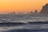 Rialto Beach 14