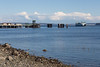 Port Townsend Ferry 18