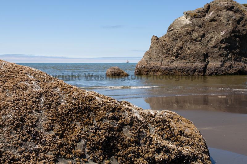 Ruby Beach 111